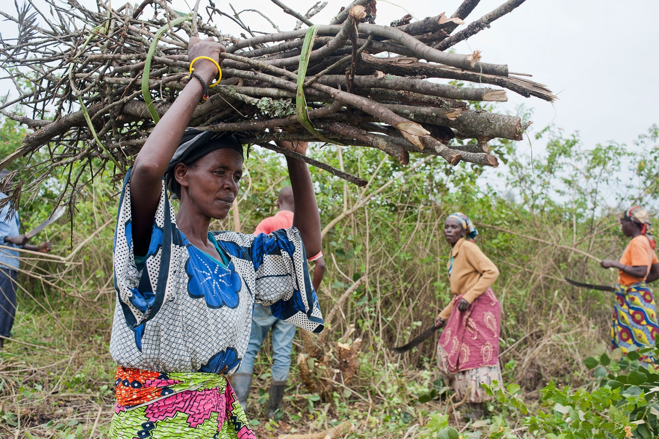 <p>Villagers clearing scrubland to prepare it for  cultivating crops as part of an IFRC sponsored Food Security program in Rwanda</p>